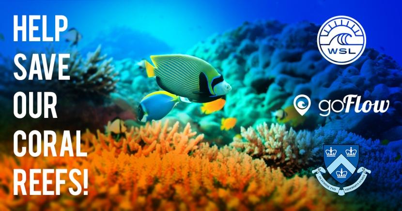 Coral Bleach Patrol