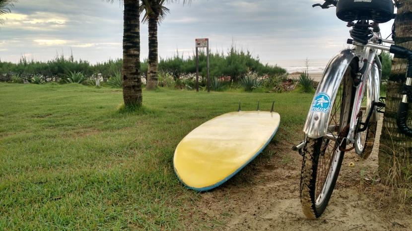 Surfe e Natureza com LeonardoSaes